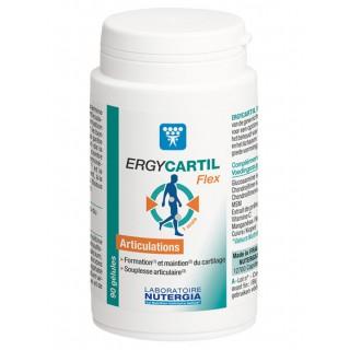 Ergycartil flex articulation