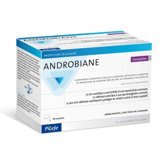 Pileje Androbiane Conception - 30 sachets