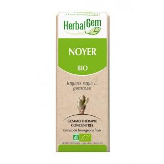HerbalGem noyer bio - 30ml