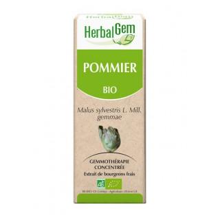 HerbalGem pommier bio - 30ml