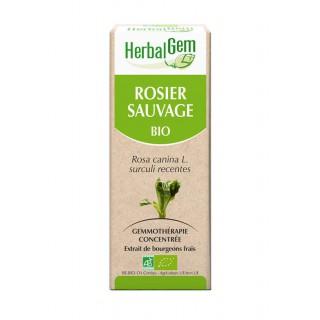HerbalGem rosier sauvage bio - 30ml