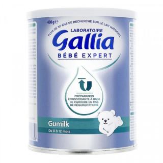 Gallia Bébé expert Gumilk de 0 à 12 mois - 400g