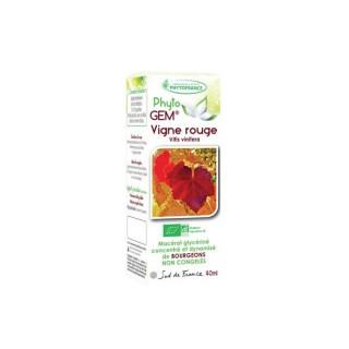 Phyto'gem Bourgeons de Vigne rouge Bio - 40ml