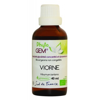 Phyto'gem Bourgeons de Viorne Bio - 40ml
