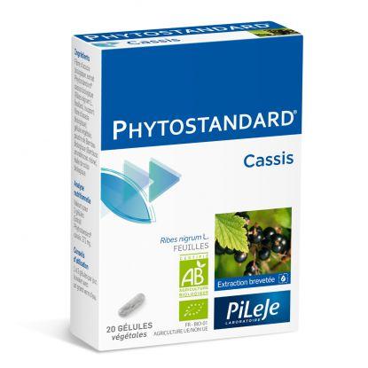 Pilèje Phytostandard Cassis x20