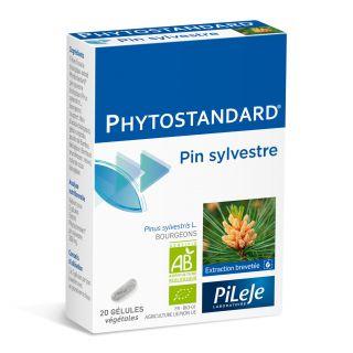 Pilèje Phytostandard Pine x20