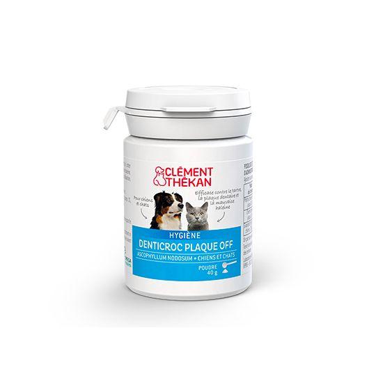 Clement Thekan Denticroc Fang powder Pot 40G