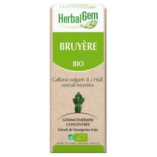 Herbalgem Bruyère Bio - 30ml