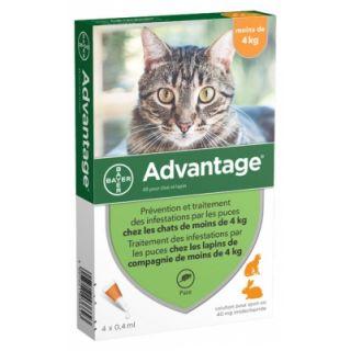 Advantage Antipuces 40 pour chat et lapin, moins de 4 kg, 4 x 0.4 ml