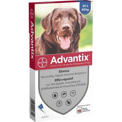 Advantix Chien +25kg, 4 pipettes