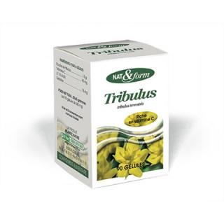 Nat et Form Tribulus 90 Gélules