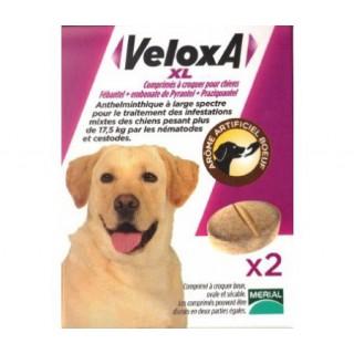 Veloxa XL Vermifuge Chien +17,5kg Goût Boeuf