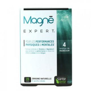 Sante verte Magné expert 15 sticks