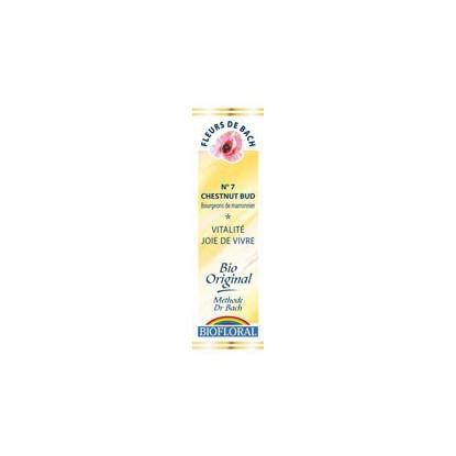 Bourgeons de marronnier / Chestnut Bud n°7 compte gouttes 20ml